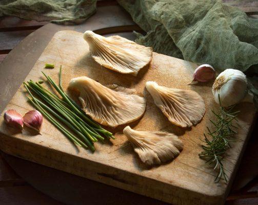 setas, romero, fotografia gastronomica, fotografia publicitaria, fotografia producto, fotografia profesional, Alicante